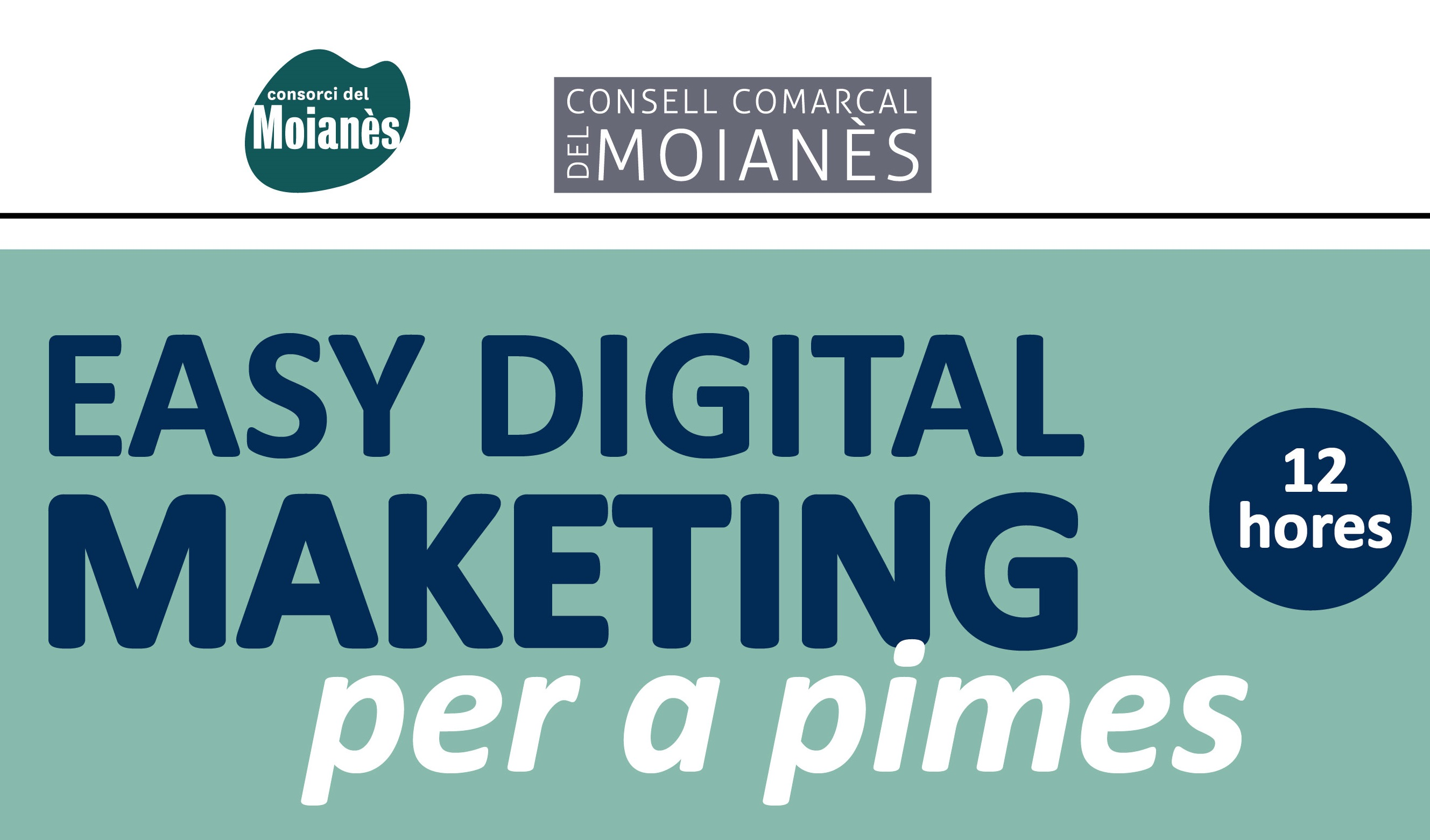 Curs Easy digital marketing per a pimes (12h)